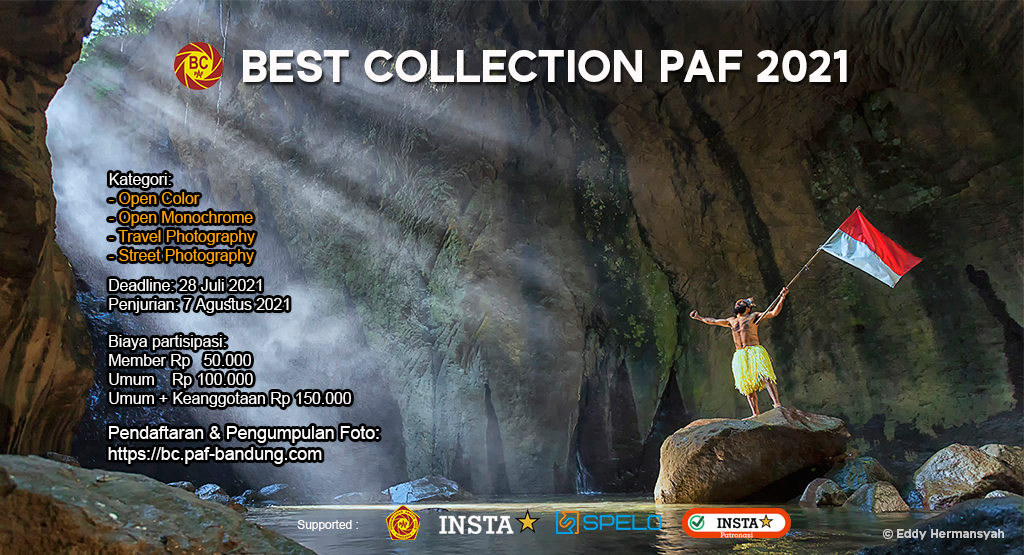 BEST COLLECTION PAF 2021